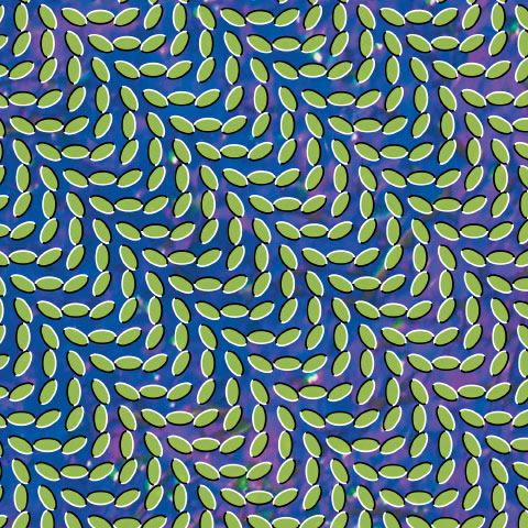 Merriweather Post Pavilon Animal Collective album cover